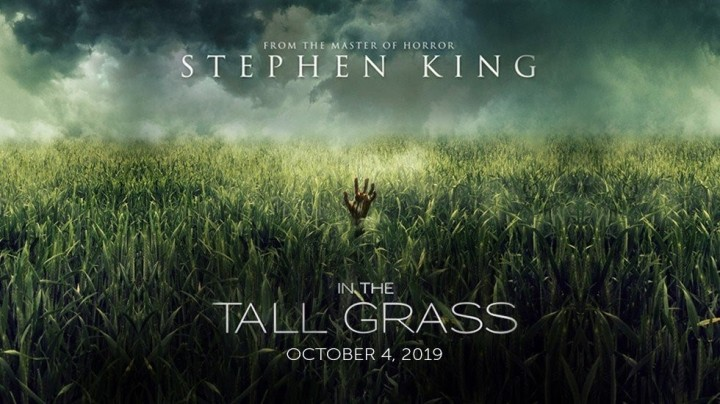 In-the-tall-grass